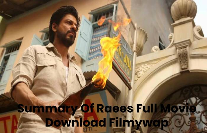 Summary Of Raees Full Movie Download Filmywap