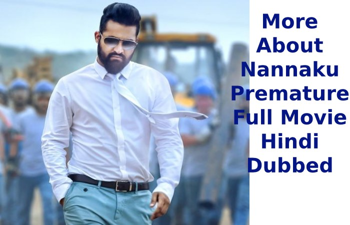 More About Nannaku Premature Full Movie Hindi Dubbed